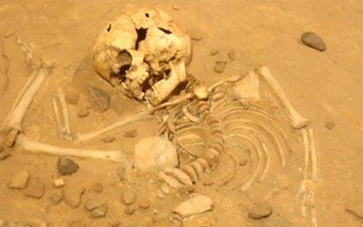 Museu Arqueològic Paleontològic Moià
